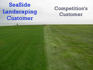 As you can see, the lawn on the left has been meticulously maintained by SeaSide Landscaping using quality, professional equipment in the hands of skilled operators who take the time to make it look beautiful before they leave.  The lawn on the right is mowed once a week at a high rate of speed without regard for overall beauty, just mow, go, collect a check.
